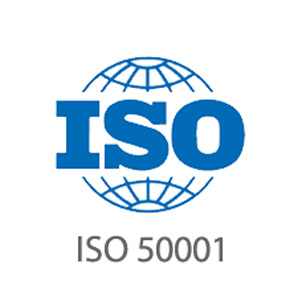 Auditor-ISO-50001_icon.jpg