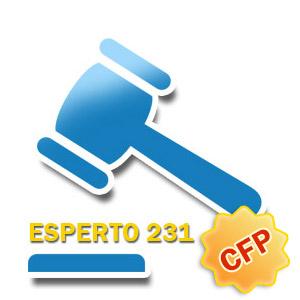 Esperto-231_icon-1.jpg