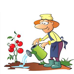 Operatore-alla-realizzazione-e-alla-manutenzione-di-giardini.jpg