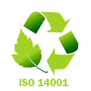 auditor_iso_14001-1.jpg